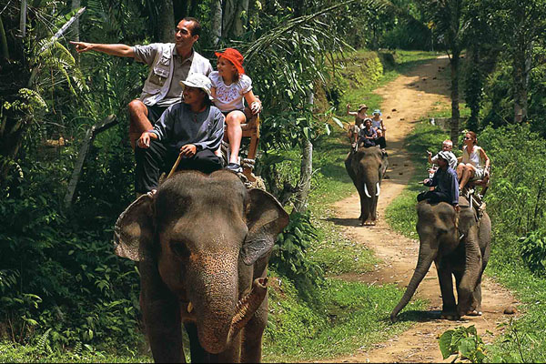 bakas, elephant tour, elephant riding, long trip