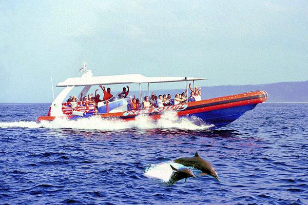 bali hai, dolphin cruise