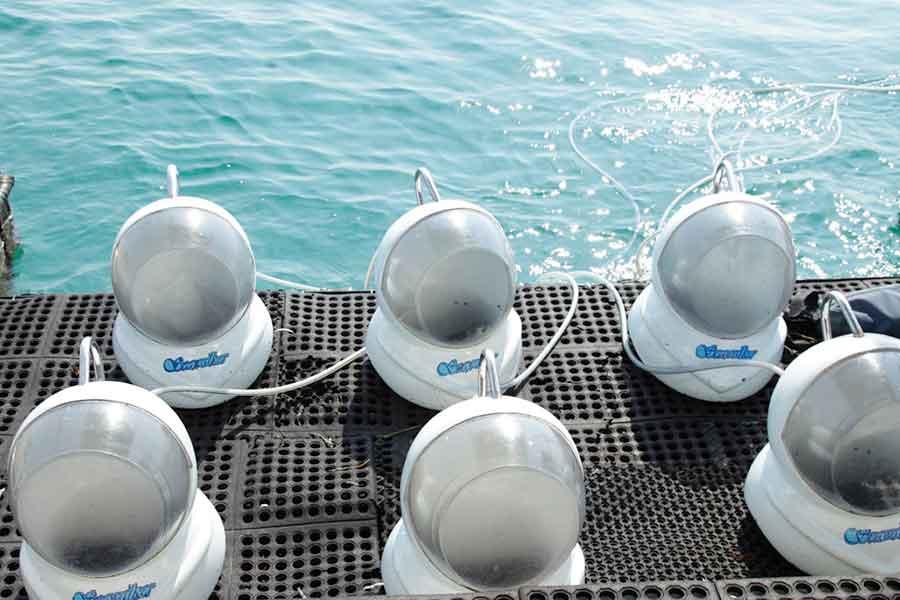 club aqua, unique helmet, seawalker sanur