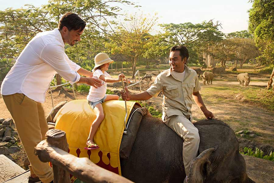 Elephant Back Safari also suitable and safe for Children