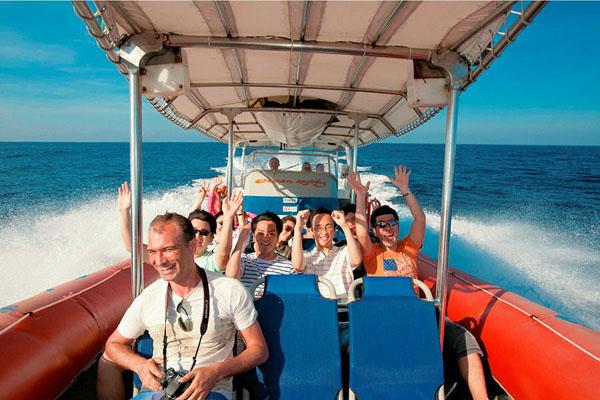 fast boat, bali hai, dolphin cruise program