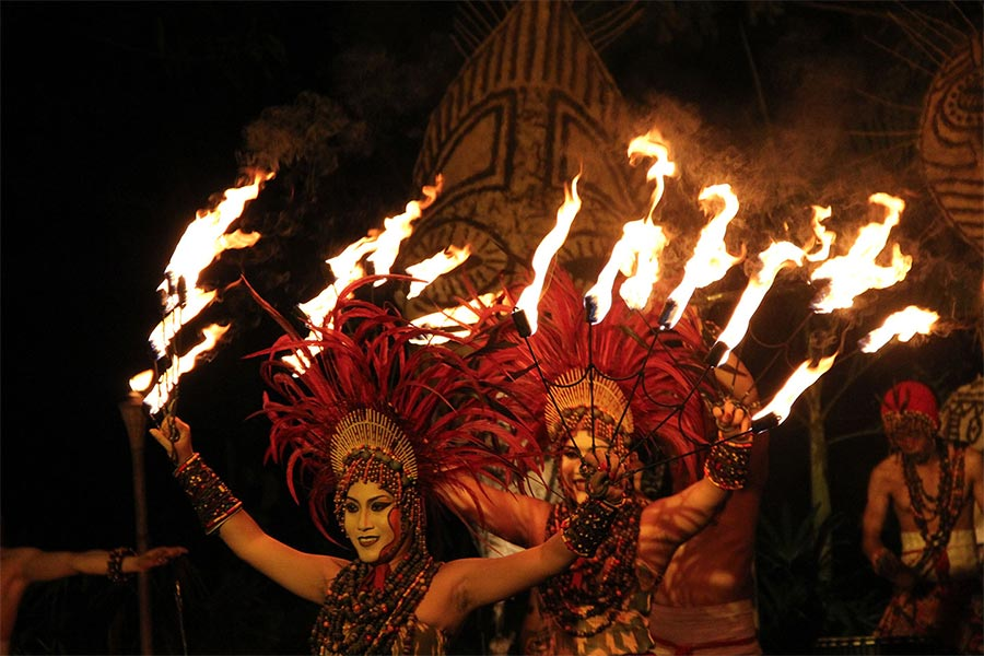fire dance, night safari package