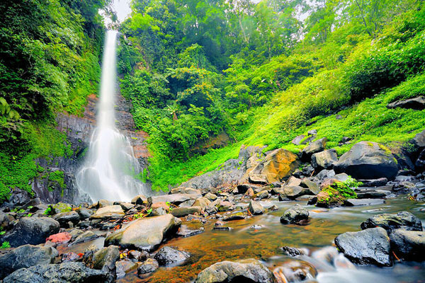 gitgit waterfall bali, north bali tour