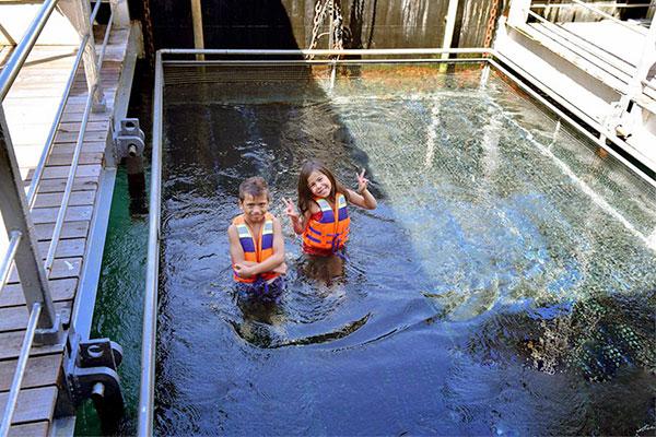 quicksilver cruise bali, kids pool