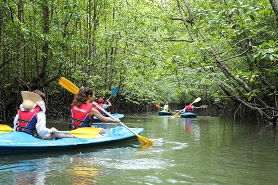 mangrove tour in nusa lembongan, lembongan tour