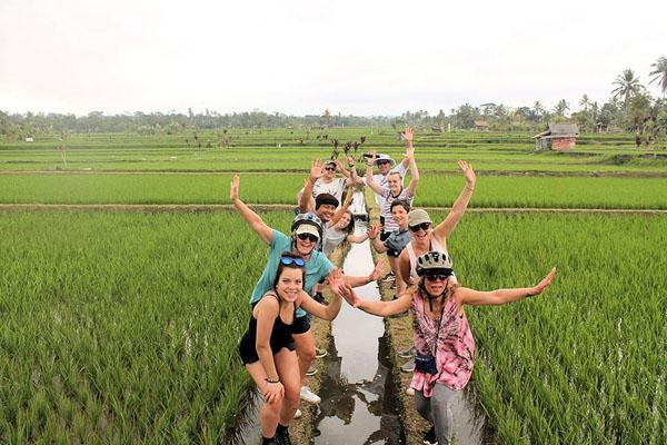 Rice terrace, jatiluwih, bali moon bike