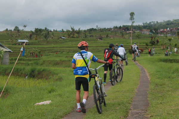 Ride passing view of World Heritage Center Jatiluwih