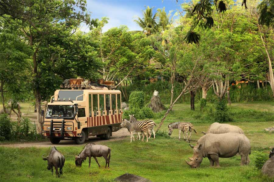 safari journey, dragon package, bali safari