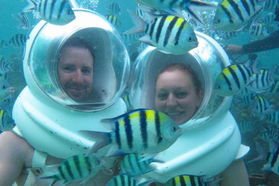 seeing underwater life, seawalker tour