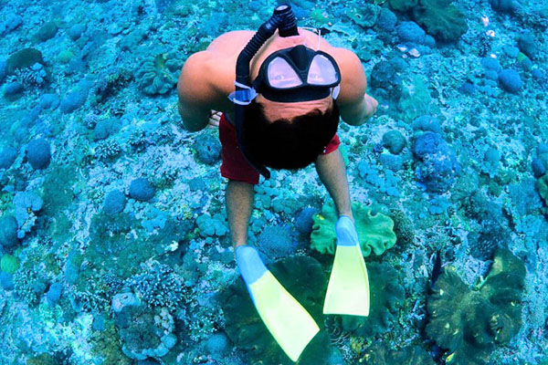 Snorkeling at Crystal Bay Nusa Penida