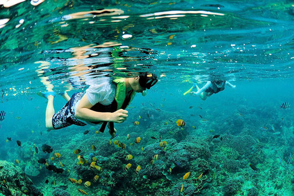 Snorkeling in Lembongan with Aristocat Sailing Cruise Package