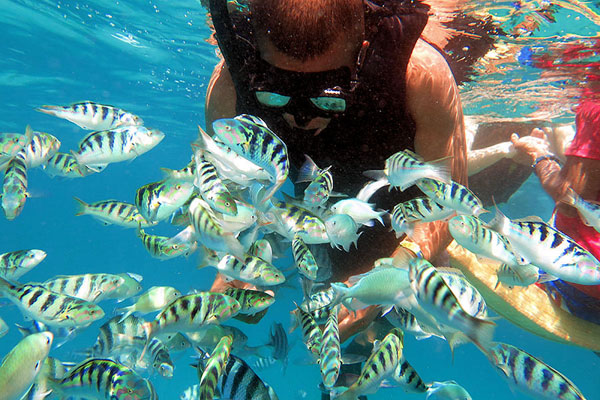 Snorkeling in Lembongan with Bounty Cruise Bali