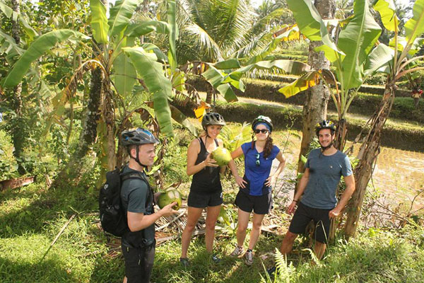 young coconut, ubud bike tour