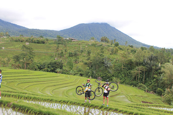 taking photo, jatiluwih view, cycling tour